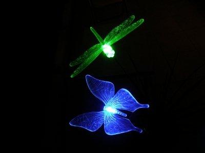 papillonlibelluledessinslumineuxplusreussis60717.jpg